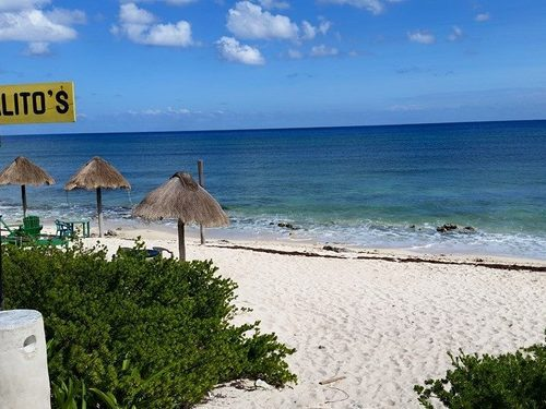 Cozumel beach atv Shore Excursion Reservations