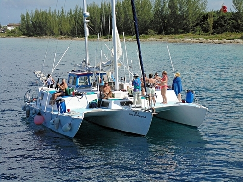 Catamaran Tours in Cozumel