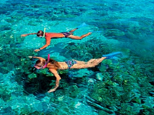 Cozumel beach Cruise Excursion Cost