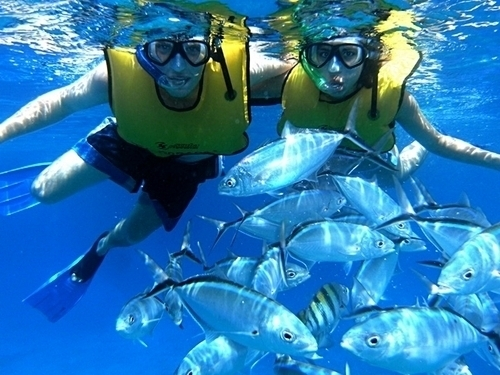 Cozumel fun aboard a beautiful catamaran Tour Reviews
