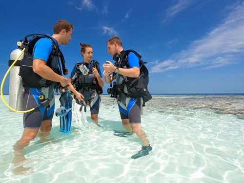 Cozumel island beginners scuba Excursion Tickets