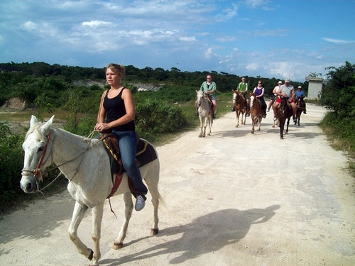 Cozumel Island Horseback Cruise Excursion Cost