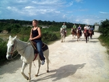 Cozumel Jungle Horseback and Beach Break Excursion