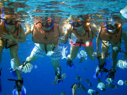 Cozumel Mexico beginners scuba Trip Cost
