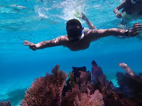 Cozumel Mexico excellent snorkeling Shore Excursion Reservations
