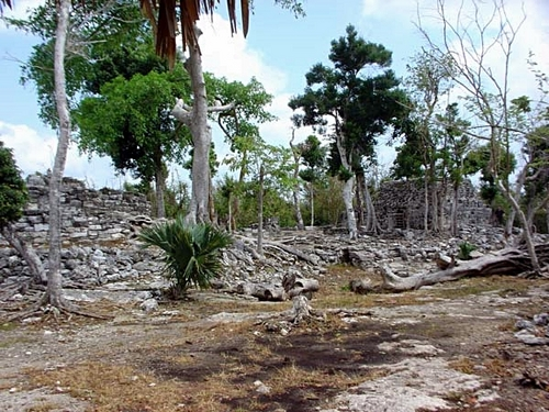 Cozumel Mexico San Gervasio Mayan Ruins Excursion Reviews