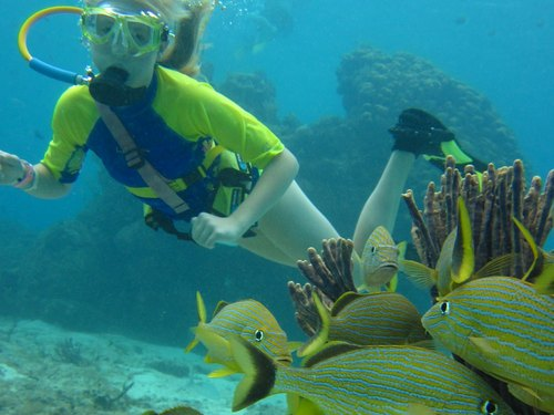 Cozumel Mexico SNUBA Diving and Snorkel Cruise Excursion Booking Prices