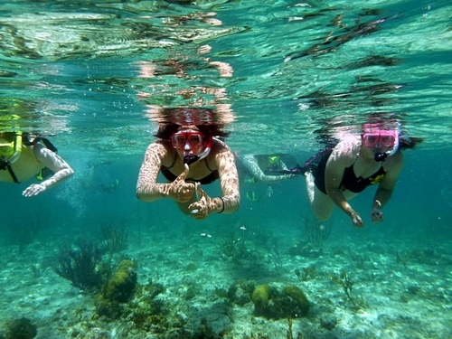 Cozumel Mexico tropical fish Excursion Prices