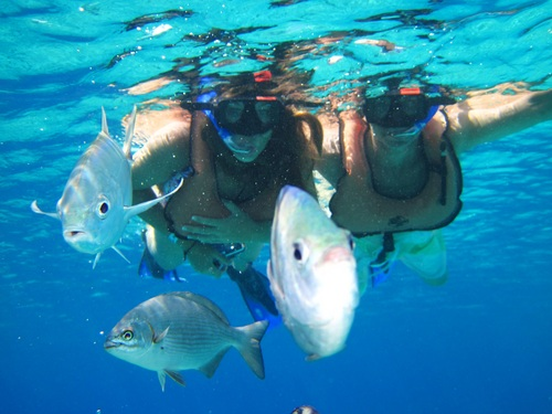 Cozumel Mexico unlimited snorkeling Shore Excursion Cost