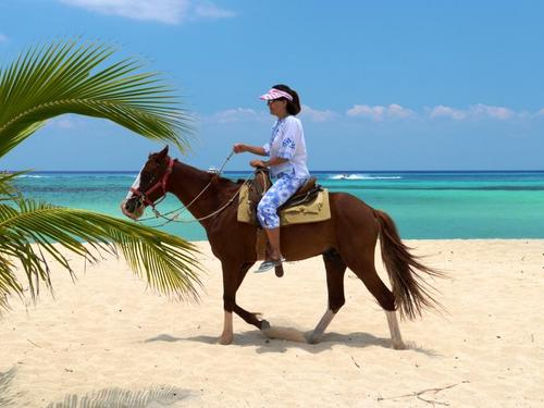 Horseback riding mr anchos Cozumel beach