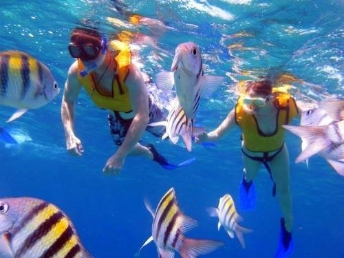 Cozumel San Gervasio Excursion Prices