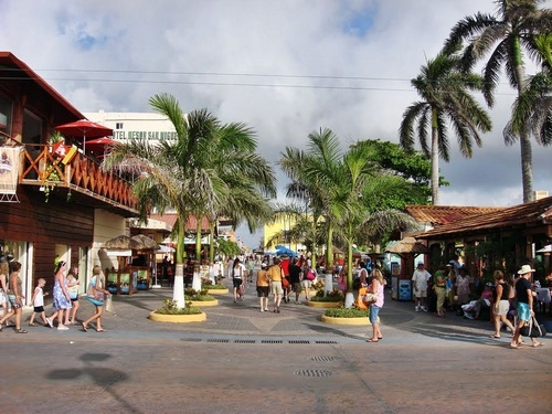 Cozumel scavenger hunt Cruise Excursion Reviews