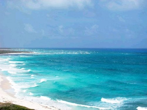Cozumel sightseeing Tour Reviews