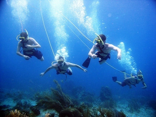 Cozumel snuba diving Trip Reviews