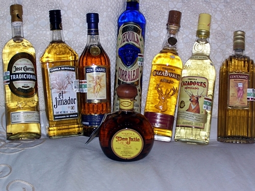 Cozumel tequila tasting Shore Excursion Reviews
