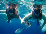 Cozumel Unlimited Shore Snorkeling and Beach Break Excursion