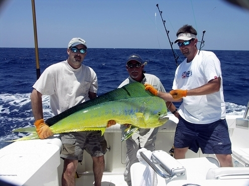 Sailing tours charleston sc for Deep sea fishing charleston sc