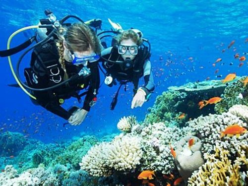 Cozumel Mexico English speaking dive master Trip Cost
