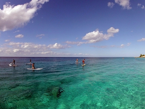 Cozumel paddle surfing tours