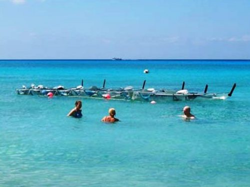 cozumel segway adventure and snorkel tour