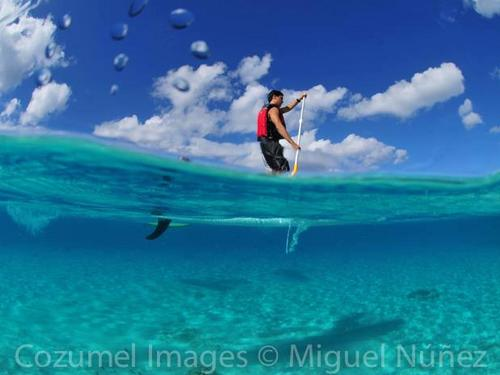 Stand up paddle board excursions in Cozumel Mexico